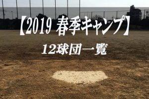 【プロ野球】2019 春季キャンプ 【12球団 まとめ】