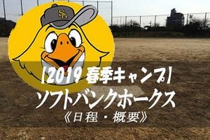 【ソフトバンクホークス】2019 春季キャンプ 【詳細 まとめ】