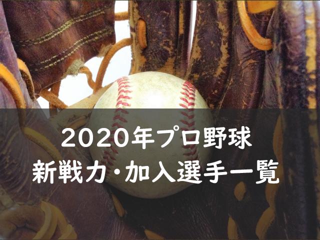 プロ野球新戦力・加入選手一覧